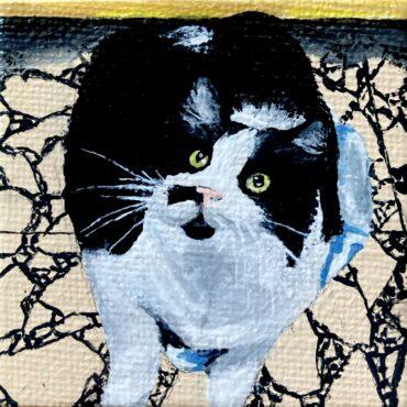 George Cat Portrait